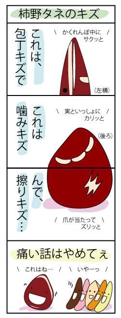 003_柿野タネのキズ